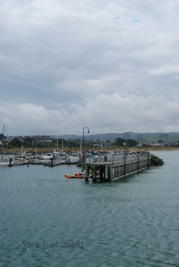 Pier at Apollo Bay