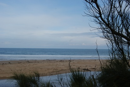 Back beach at Apollo Bay