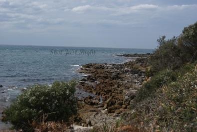 Coastline at Currarung