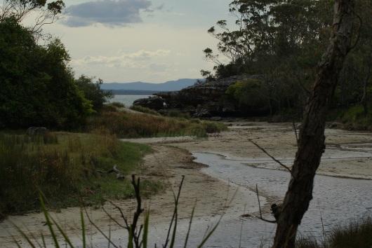 Creek near Currarung, Jervis Bay