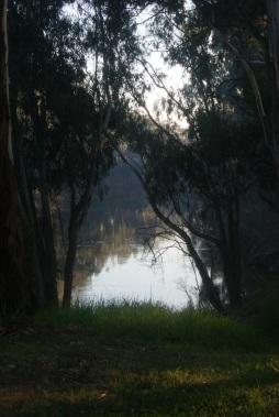 Goulburn River on an April Morning