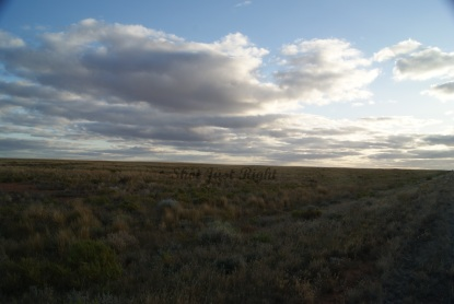 Plains near Broken Hill