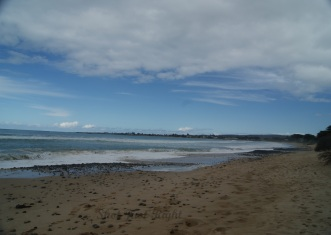 Apollo Bay from beach at Wild Dog Creek