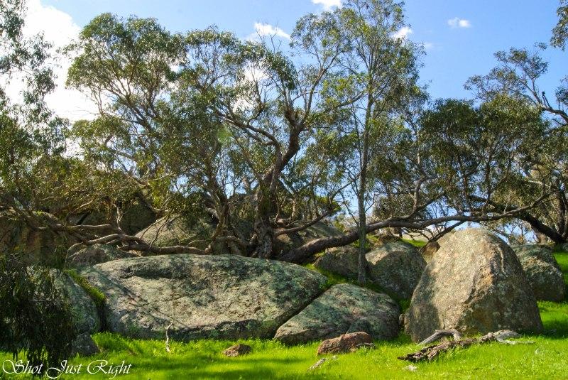 Lovely granite bolders