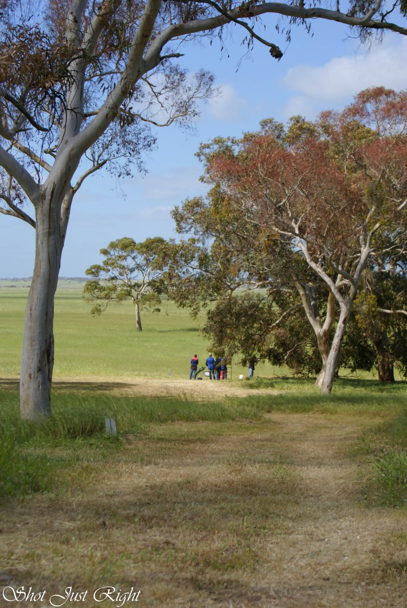 Great bush area in Kingston SE South Australia