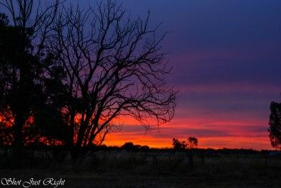A Wonderful Echuca Sunset