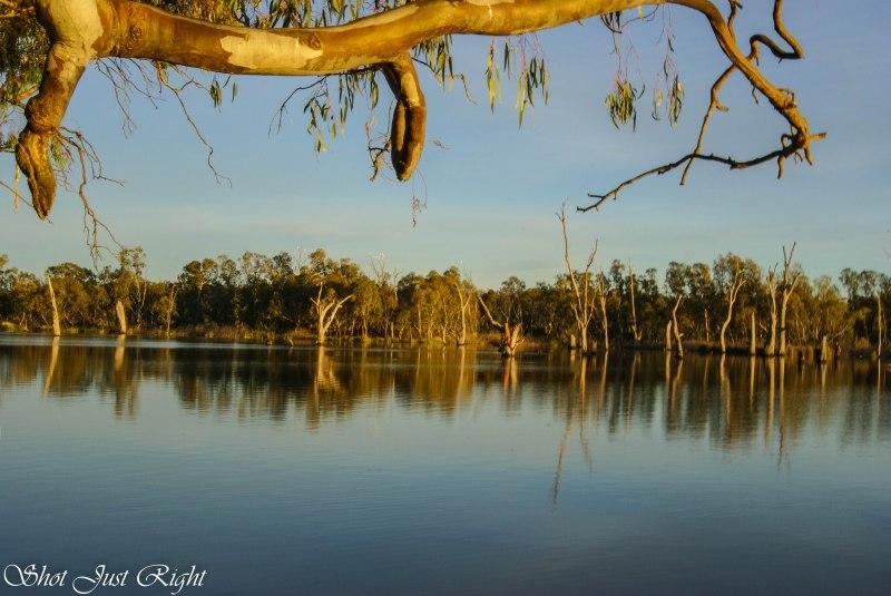 Lake Mulwala at 0630 from Bundalong