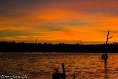 Sundays sunrise at Bundalong