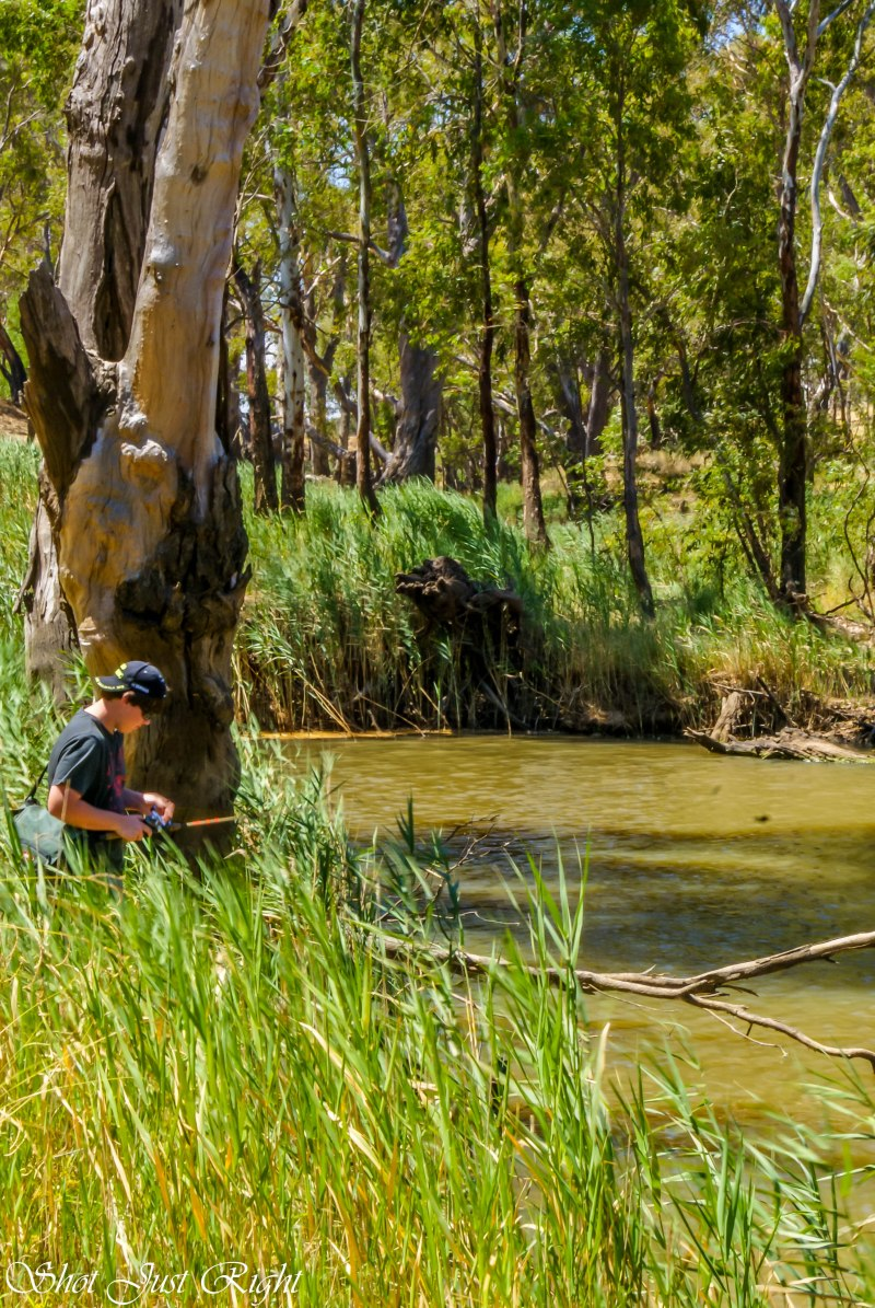 Fishing below the wall at the Elmore Weir