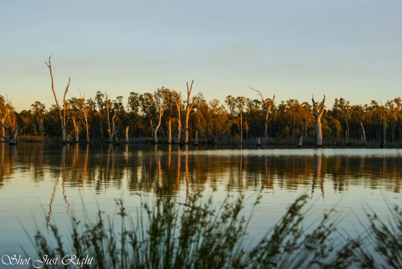 Early morning at Bundalong revisited