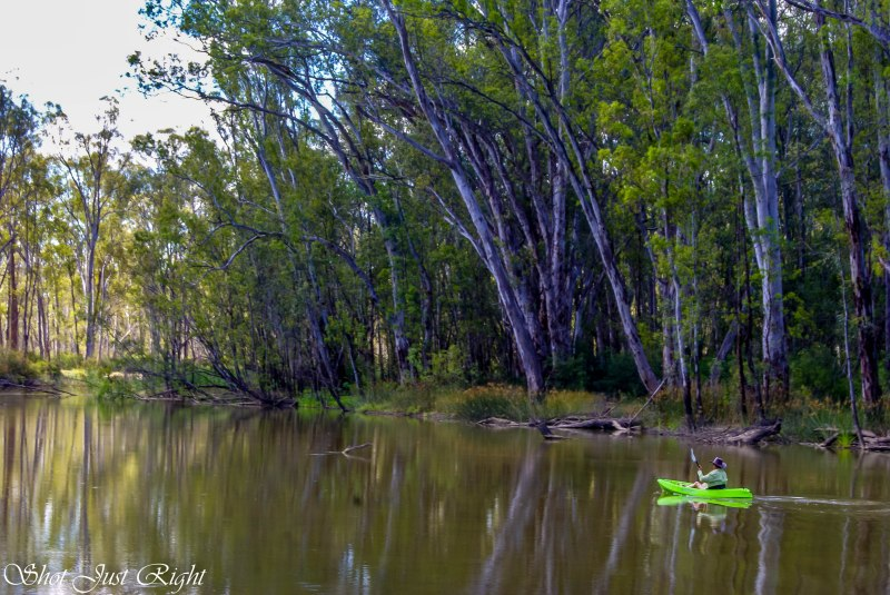 Canoe on the Edwards River, Mathoura