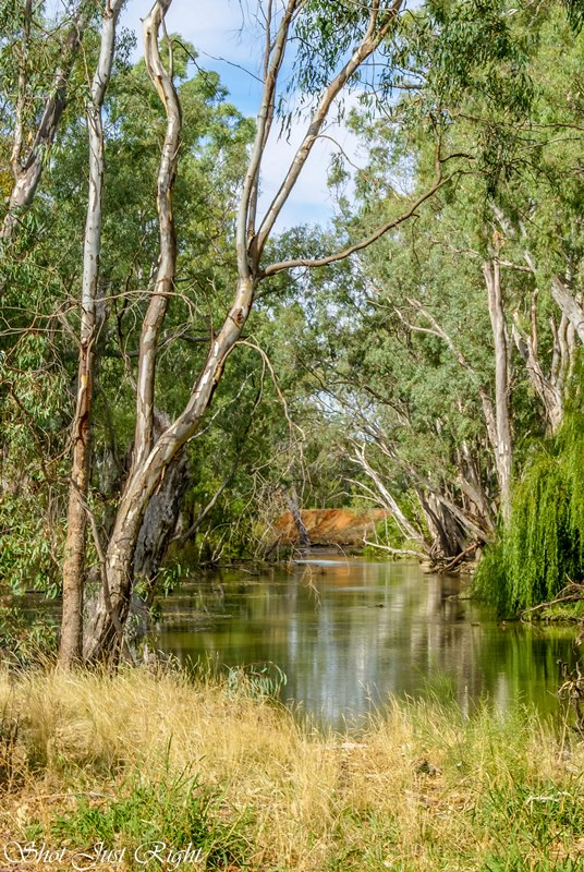 Gulpa Creek, Mathoura, NSW