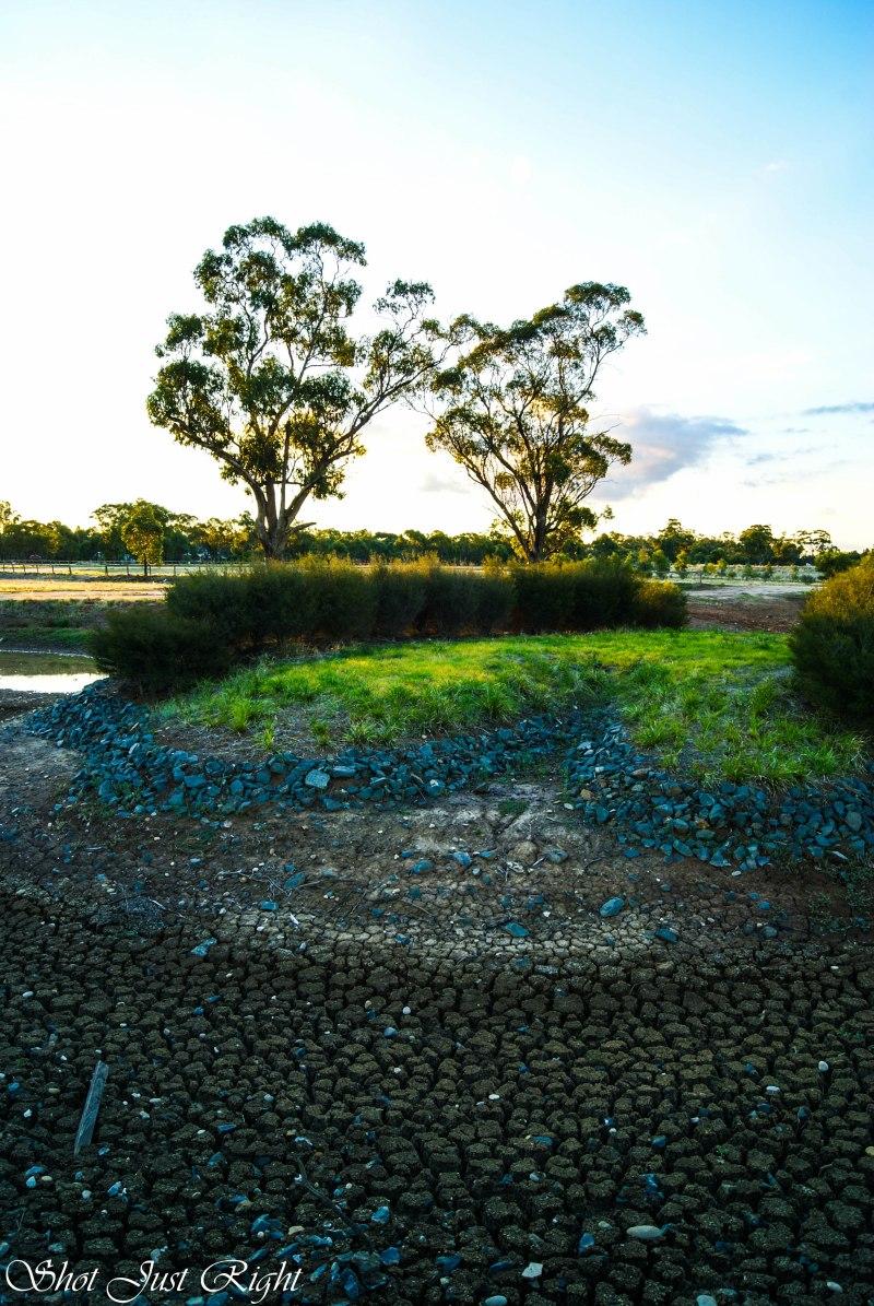 Dry Dam at Moama
