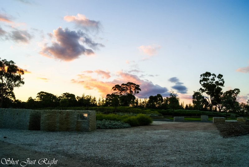 Moama Botanical Gardens late evening