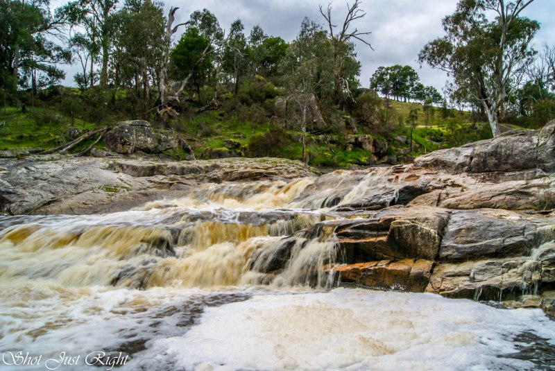 Creek in the Strathbogies