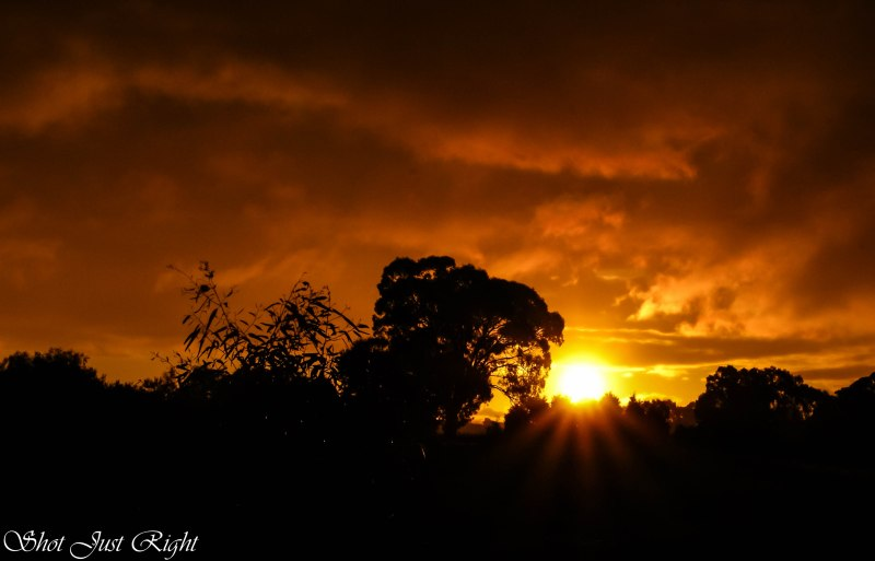 Just another Awesome Sunset in Echuca