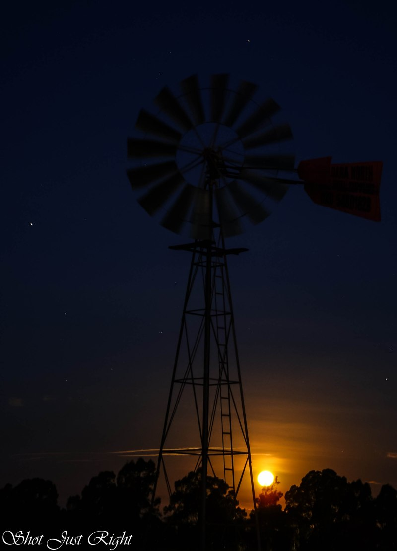 Rising Moon tonight