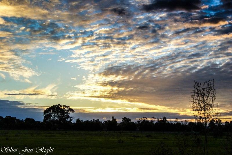 Earlier Sky last night