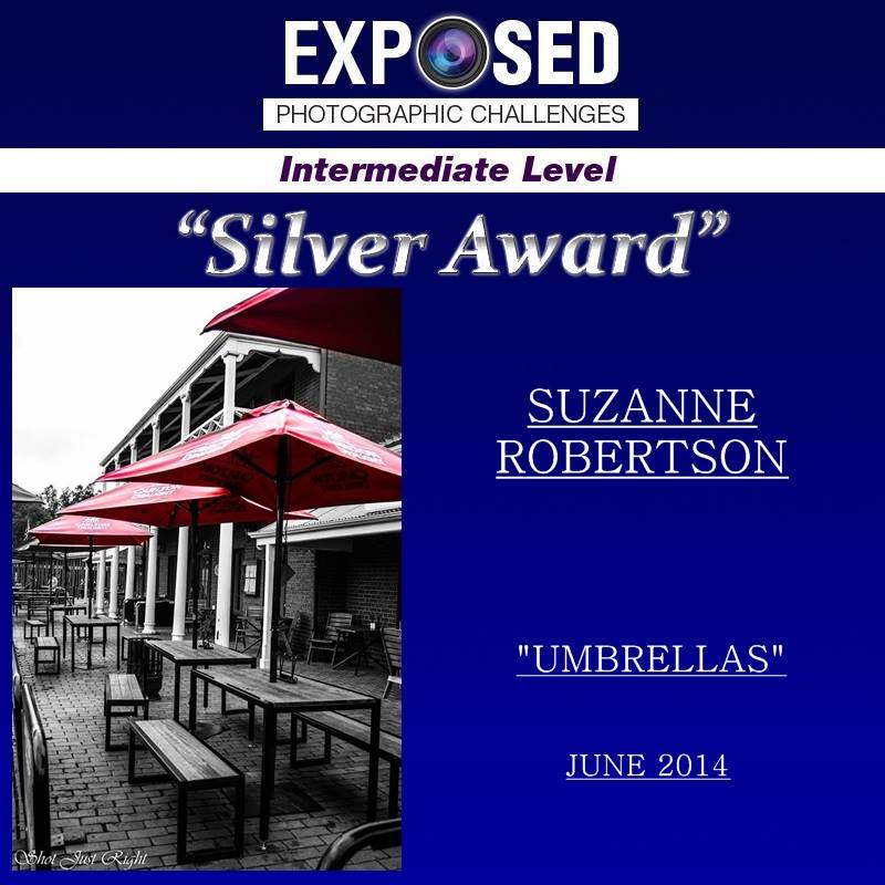 WOW, Another Silver Award