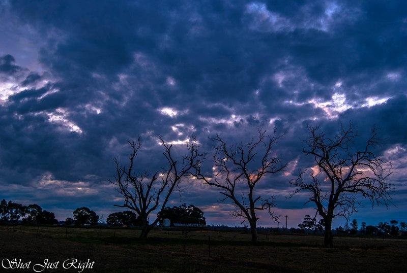 Evening from Nanneella Road, Echuca