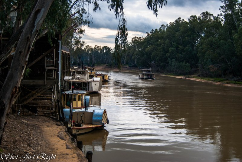 Port of Echuca today 14/06/2014