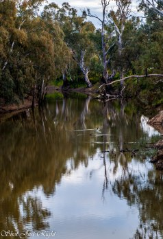Campaspe River near Beechworth Bakery