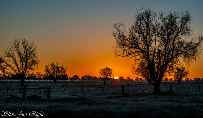 Sunrise on a frosty winters morning - Nanneella, Victoria.