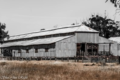 Perricoota Station Woolshed revisited - HDR