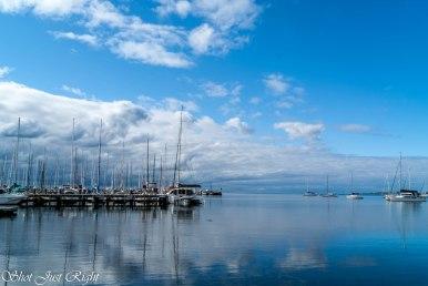 Geelong Harbour
